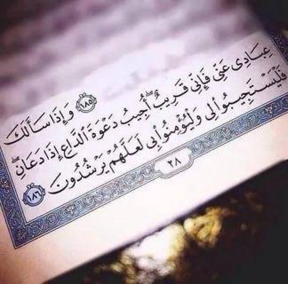 قرآنية.jpg
